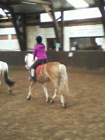 » L'extérieur du cheval exerce une influence bénéfique sur l'intérieur de l'homme.ܤ