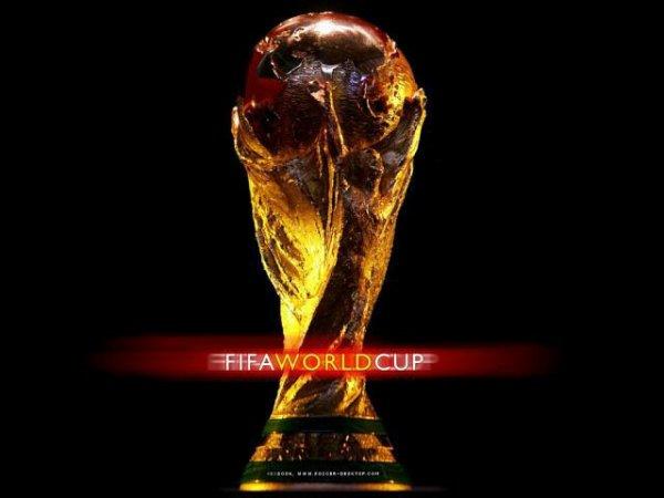 Sesoir le début de la coupe du monde