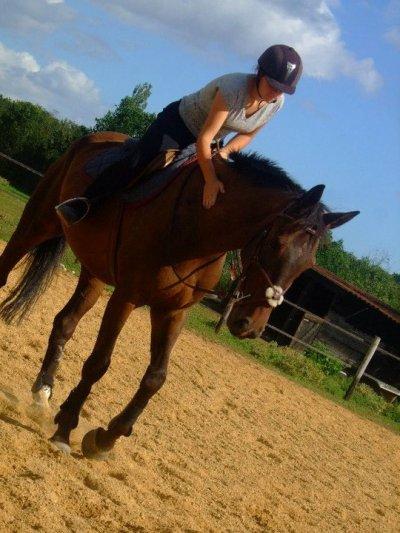 Blog de mon cheval nymh blog de mon cheval nymh - Frison qui saute ...