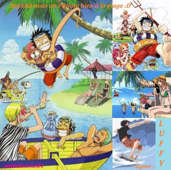 Les Mugiwaras à la plage :D