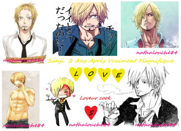 I LOVE SANJI !!! And you ??