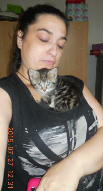 Xena le chat de sandy :)