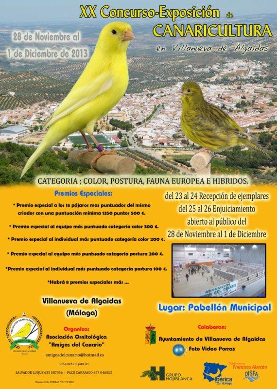 cartel villanueva de algaidas 2013