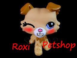 Roxi petshop