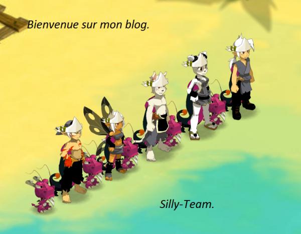Présentation Silly-Team.