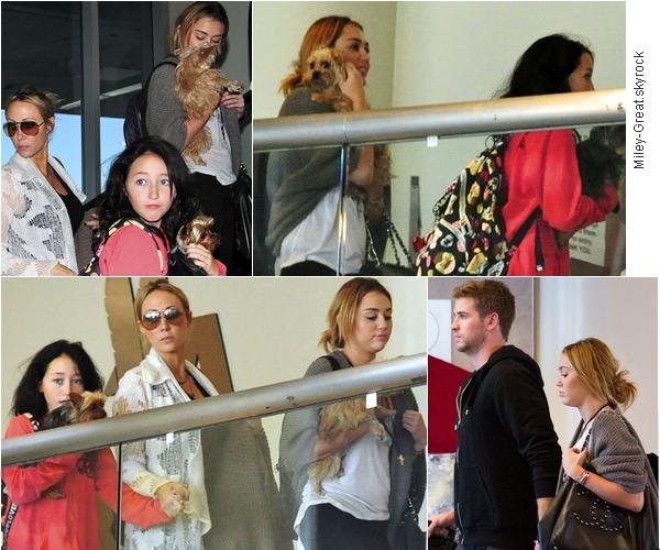27.09.11 Miley, Liam et toute la famille à l'aéroport de Los Angeles. - Voilà quelques temps qu'on avait pas vu notre Miley aussi heureuse. Et en effet qu'est-ce qui peut être encore mieux que de se rendre à Nashville entourée de toute sa famille et de Liam ? C'est donc à l'aéroport qu'on aperçoit Miley portant Lila dans ses bras et des valises à la main. Miley aime beaucoup Liam et ça se voit, tout les deux se tiennent la main et rigole ensemble. Côté tenue ce serait un top/bof, je n'aime pas tellement sa veste mais le reste est plutôt jolie. On peux voir que Tish aime bien les 'pantoufles' de Miley. Top, bof ou Flop ? Que penses- tu du couple Miley / Liam ?