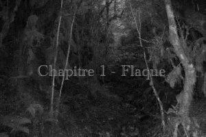 Chapitre 1- Flaque Fiction 1