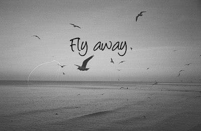 FLY AWAY WITHE YOUR MIND...............TRY TO