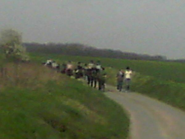samedi 02 avril 2011 14:28 sortie poneys