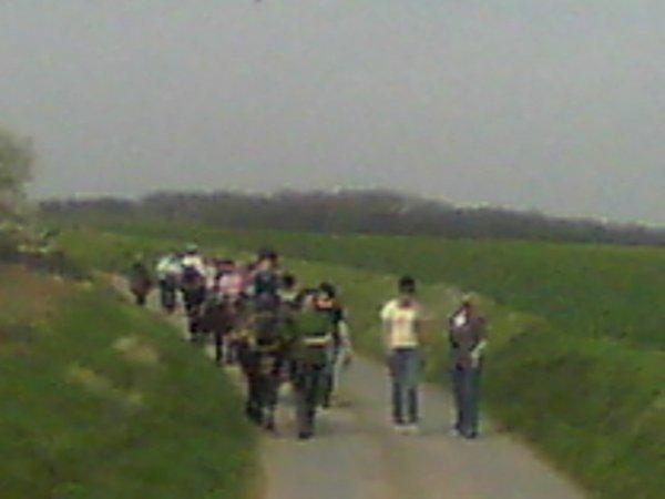 samedi 02 avril 2011 14:28 poneys