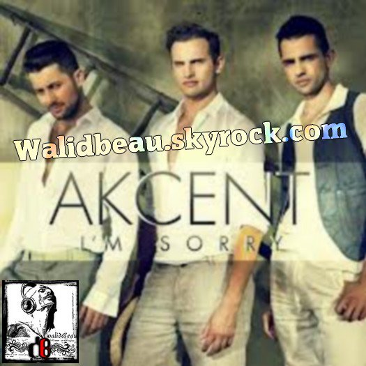 Akcent /  I'm Sorry feat Sandra N  (2012)