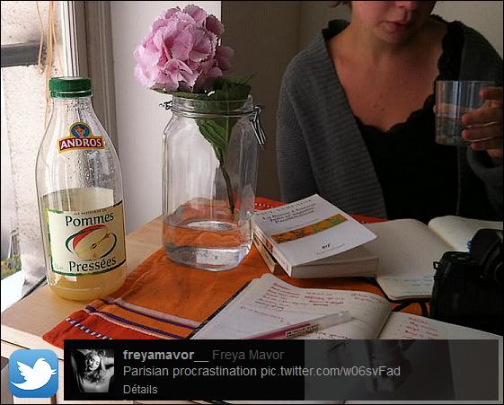 Informations . Freya a décidé de quitter l'Ecosse, et d'habiter à Paris pour continuer sa carrière d'actrice. Elle valorise principalement son rêve d'enfance dit-elle lors d'une interview le 23 mai 2013, voici la photo qu'elle a posté récemment sur Twitter depuis son appartement parisien intitulé «Parisian procrastination» qui veut dire procrastination parisienne. Cela va changer de la Mini Trash que tout le monde connait à travers la série britannique «Skins», j'attend de voir la suite de son parcours.  .