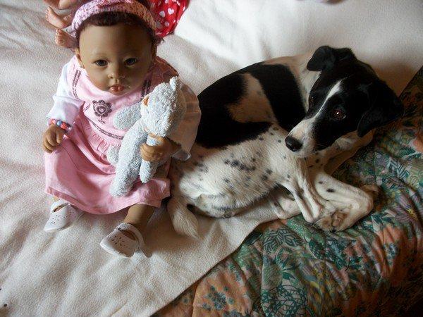 ma chienne au pays des poupées.