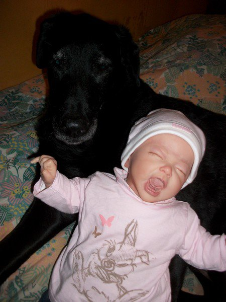 ma chienne et ma poupette.
