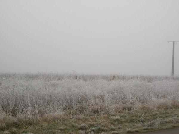 une belle et grosse gelée pour la fin de l'année.