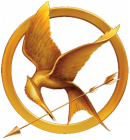 Photo de HungerGames-Virtual