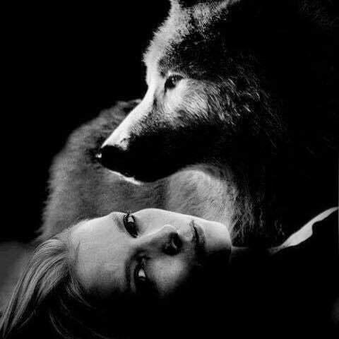bisous du loup