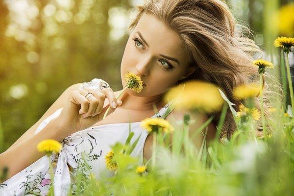 pensées flowers