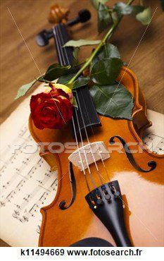 Une rose posée ....