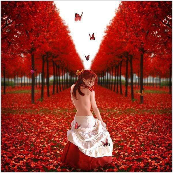 Je viens me glisser sur ta page en couleurs automnales pour te souhaiter une agréable journée.