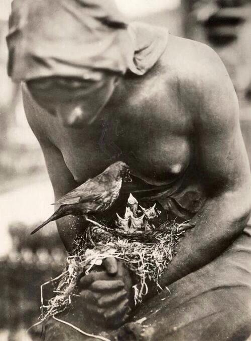 Un  oiseau noir dans les mains d'une statue a Berlin