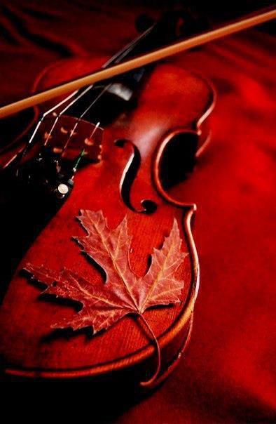 Le violon brisé  Aux soupirs de l'archet béni,  Il s'est brisé, plein de tristesse,