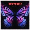 Le papillon du labyrinthe