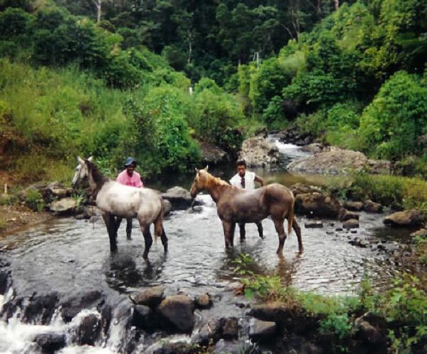 Les Pays _ _ Fidji