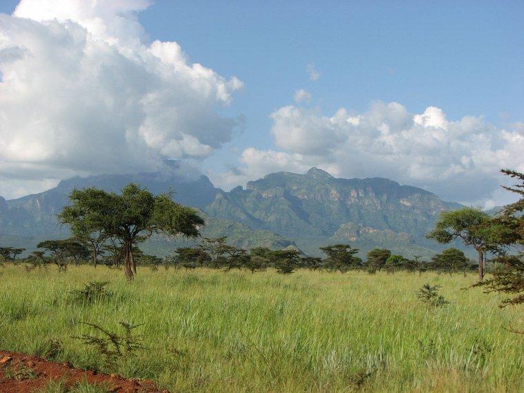 Les Pays _ _ Ouganda