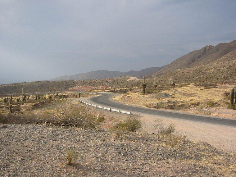 Parc national Los Cardones
