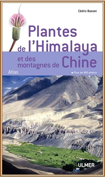 Plantes de l'Himalaya et des montagnes de Chine