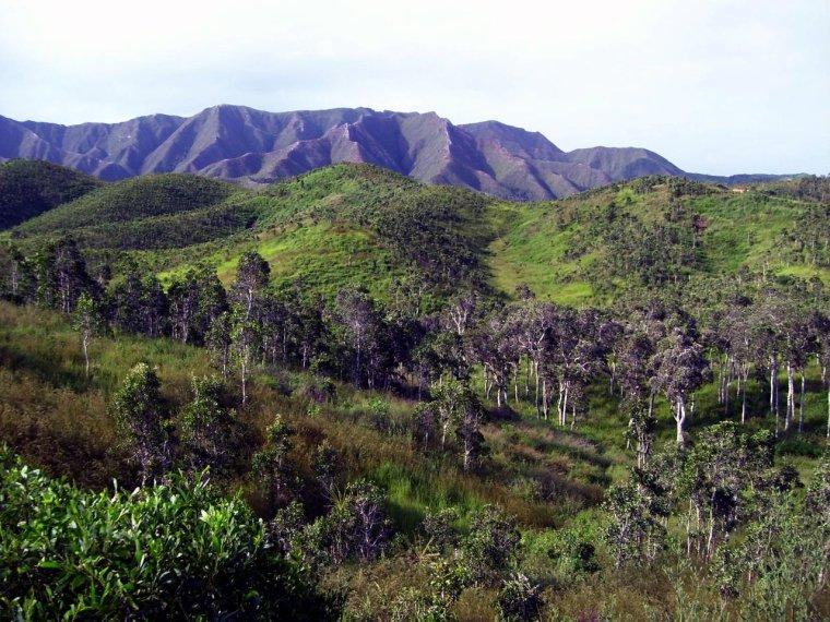 Images de Nouvelle-Calédonie