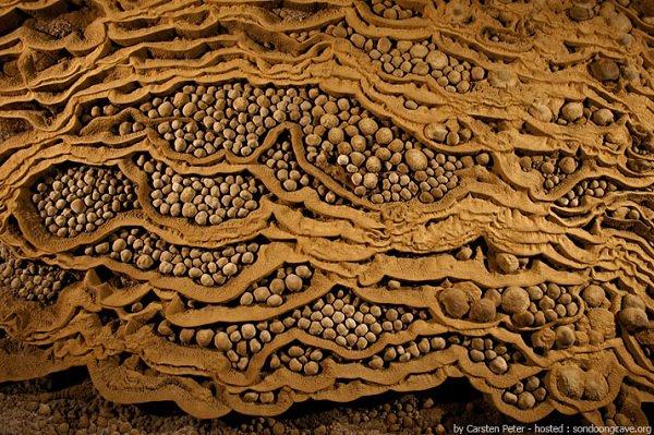 Vietnam _ Grotte de Hang Son Doong
