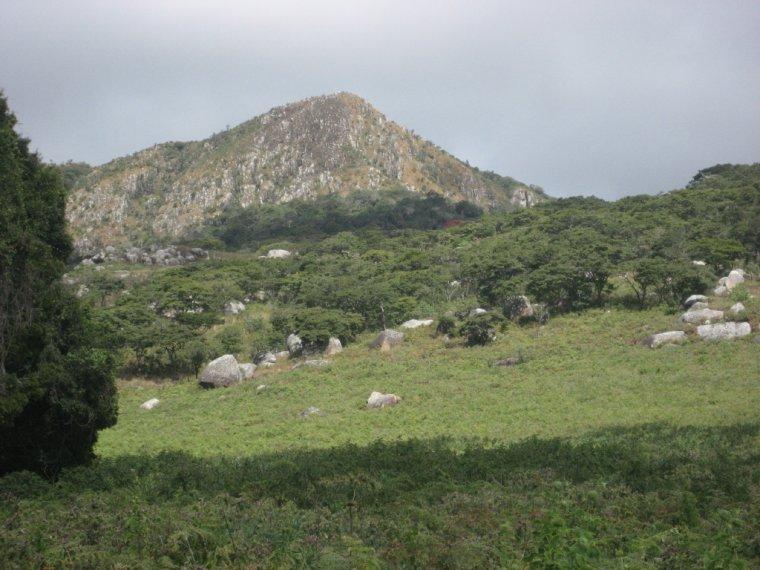Mozambique _ Parc national de Gorongosa