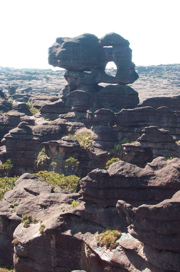 Géologie _ Tepuy