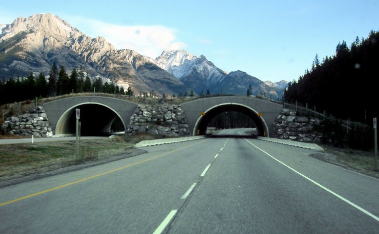 Canada _ Route Transcanadienne