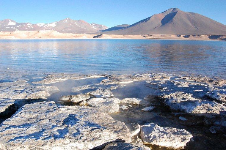 Chili _ Désert d'Atacama