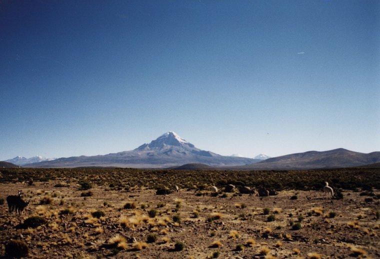 Nevado Sajama  -  Volcan  -  Bolivie