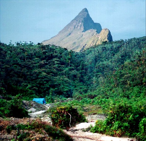 Brésil - Parc national du Pico da Neblina