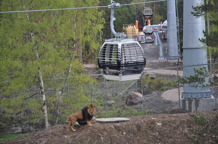 Parc animalier et de loisirs  -  Suède  -  Kolmårdens Djurpark