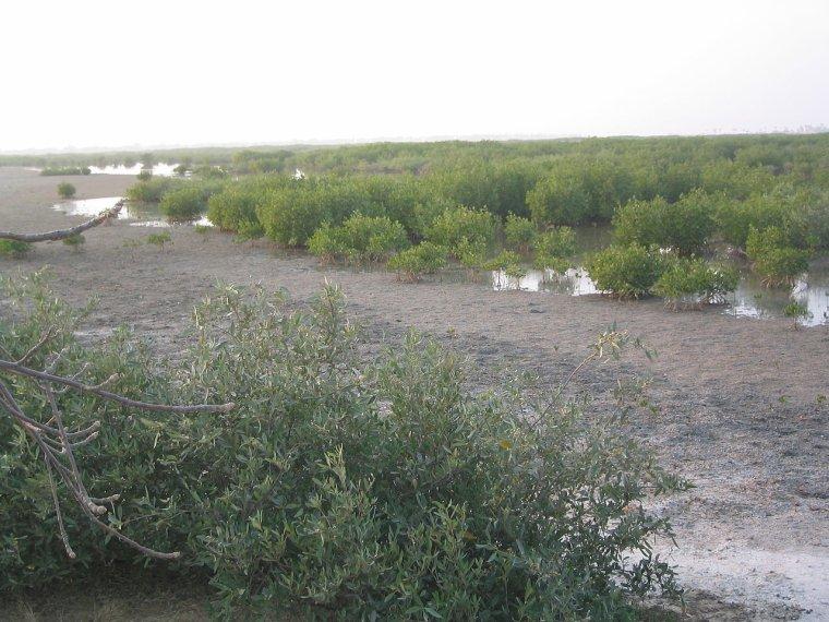 Hydrologie  -  Bolong