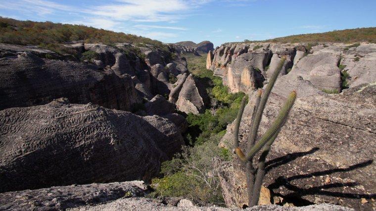 Brésil  _  Parc national de la Serra da Capivara