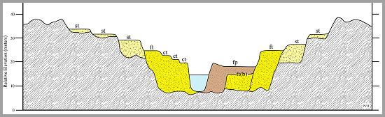 Biome  -  Terrasse alluviale