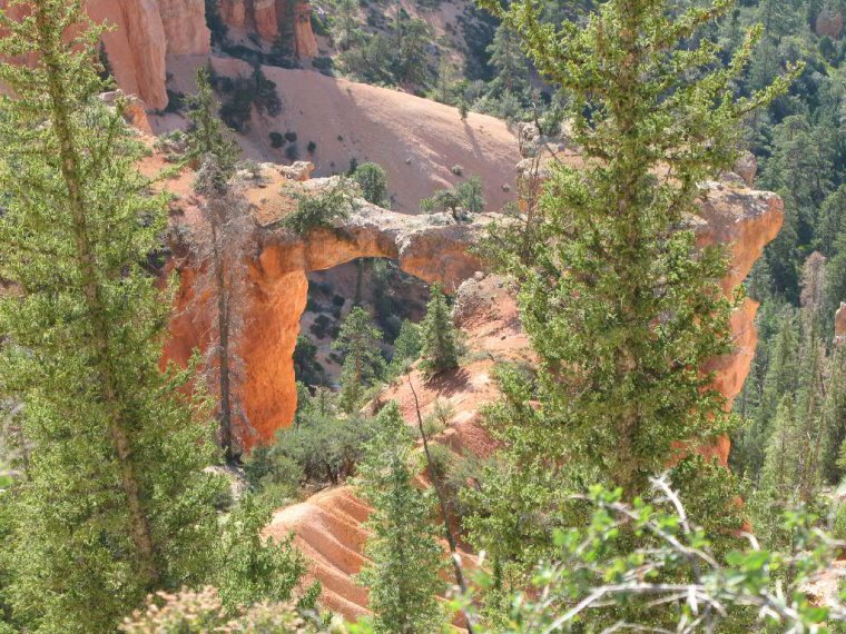 Etats-Unis  -  Parc national de Bryce Canyon