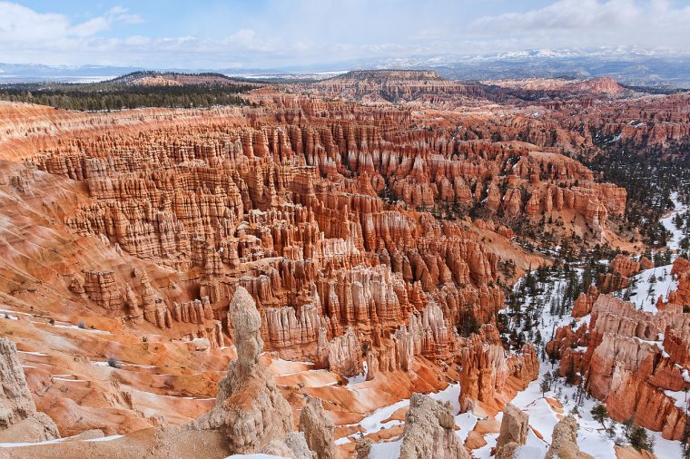 Etats-Unis  -  Parc national de Bryce Canyon