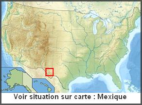 Mexique / Etats-Unis  -  Désert de Chihuahua