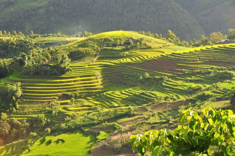 Etat du Vietnam  -  Sa Pa