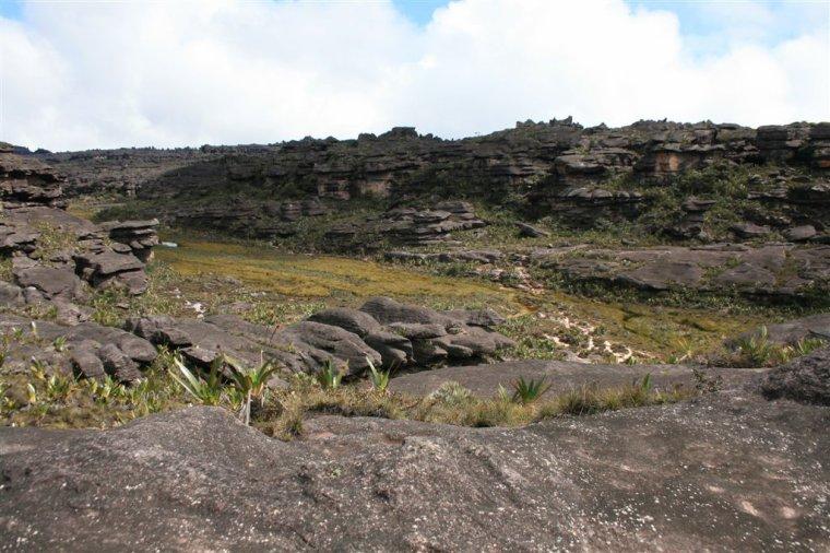Amérique du sud  -  Mont Roraima