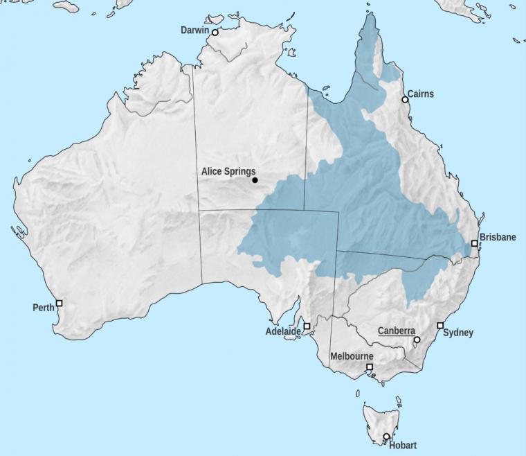 Australie  -  Grand bassin artésien