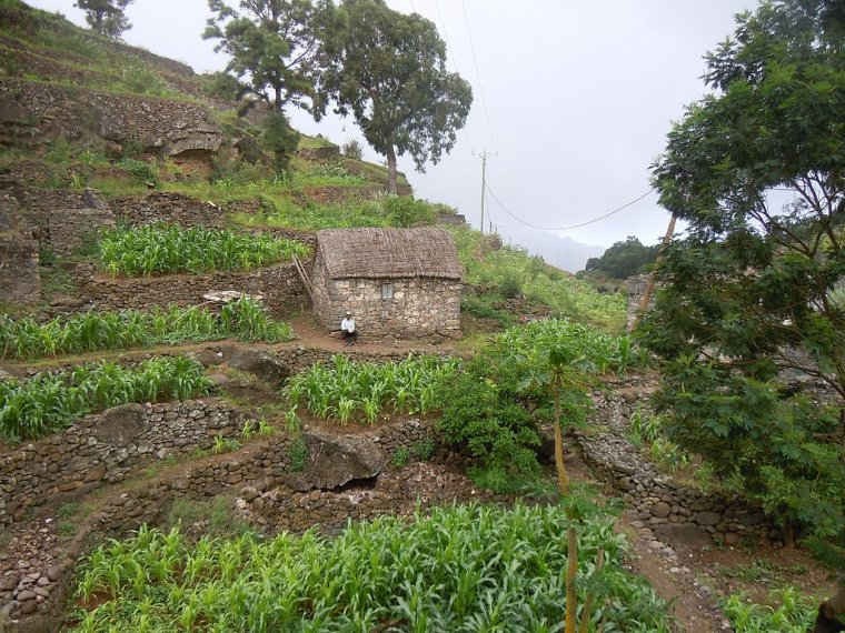 Cap-Vert  -  Santo Antão